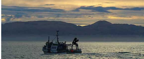 Inshore trawler in New Zealand waters